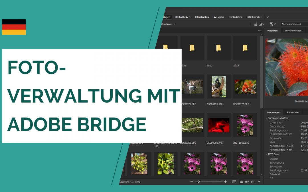 Fotoverwaltung mit Adobe Bridge